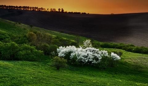 hintergrundbilder frühlingswiese 4k 3840x2160