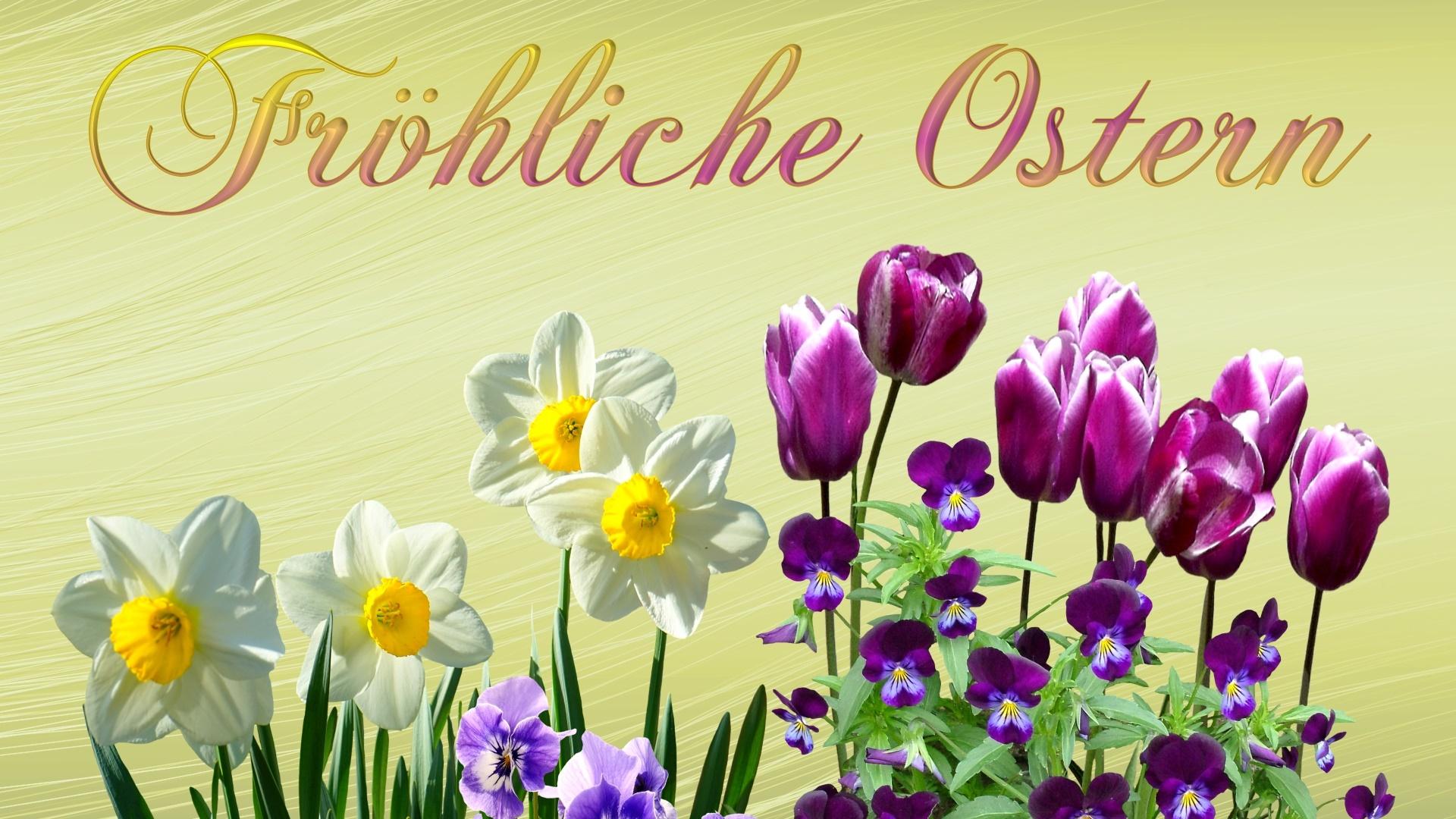 Ostern Bilder Kostenlos Download