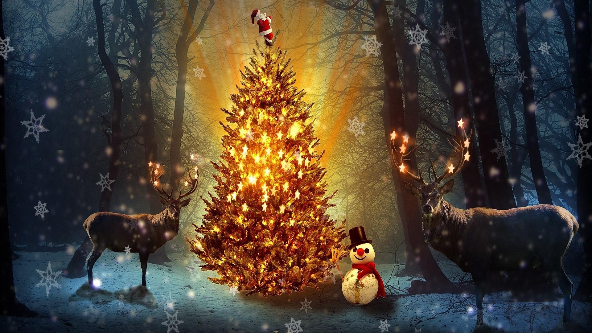 Frohe Weihnachten Hintergrundbilder Weihnachten Kostenlos