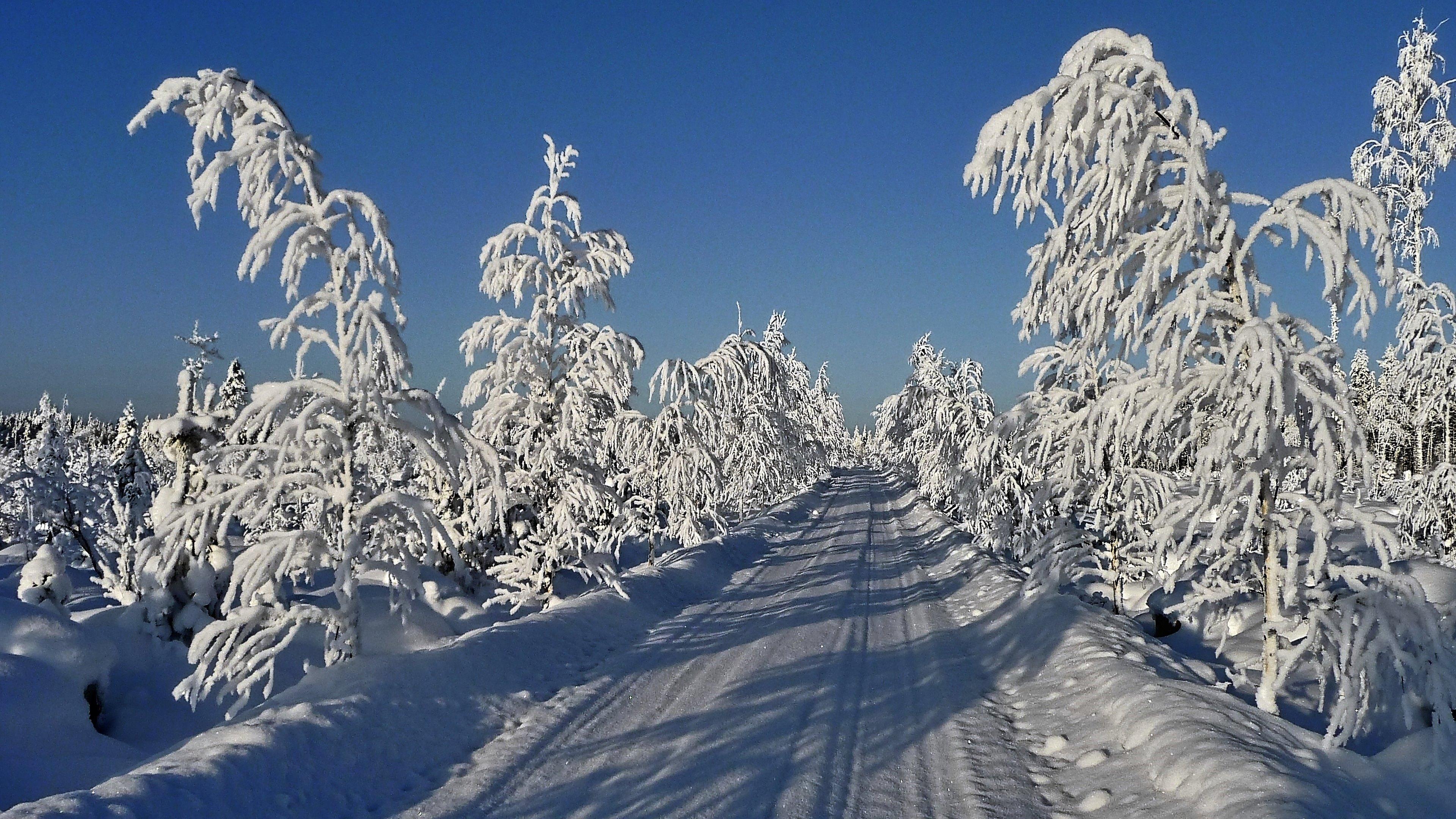 Gratis Hintergrundbilder Winter 3840x2160