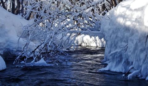 Schone Schnee Bilder Kostenlos