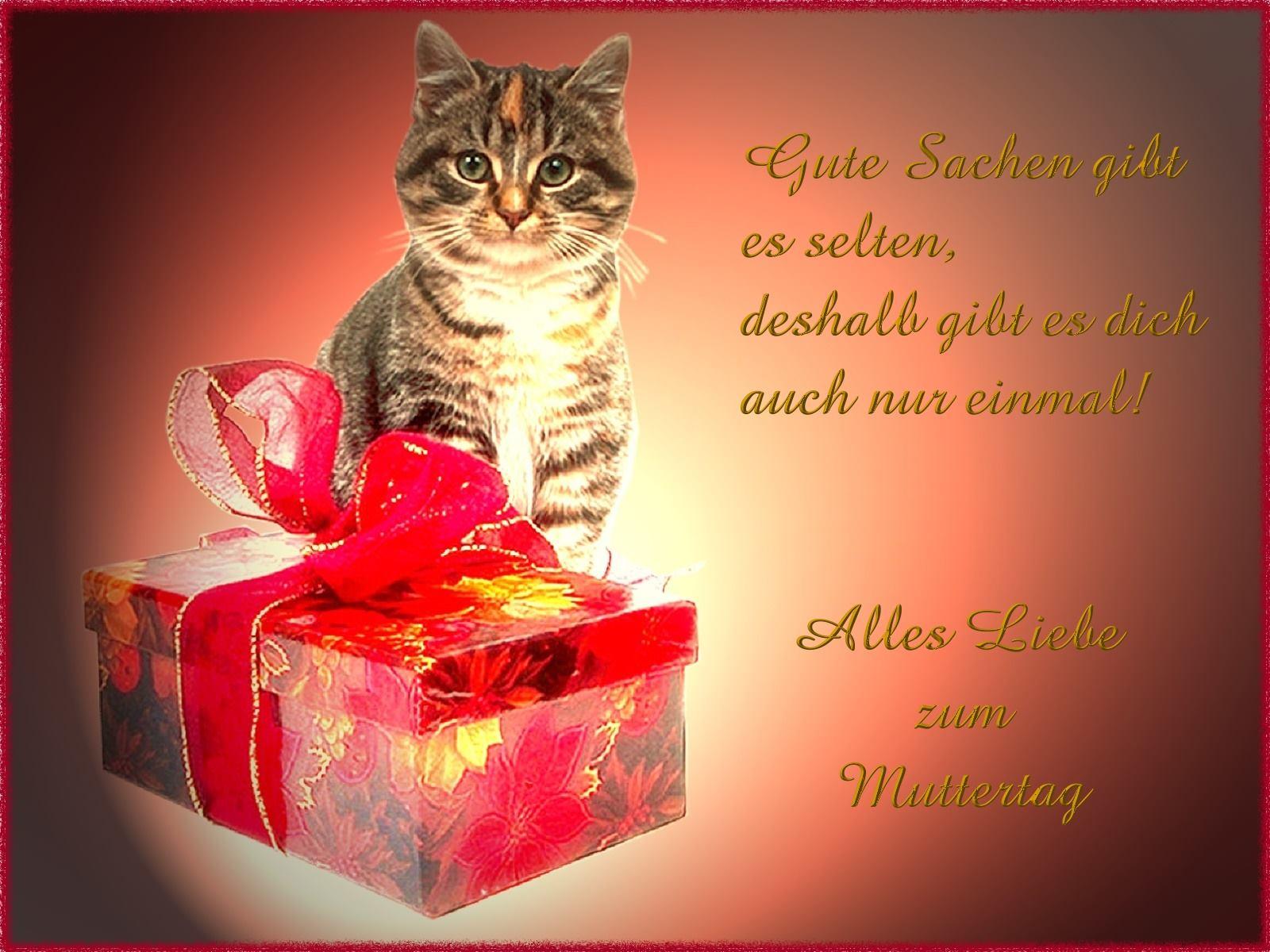 Top Geschenkideen, auf die du nie gekommen wrst!